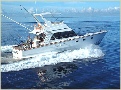The big game fishing fleet of jp henry charters the for Large fishing boats